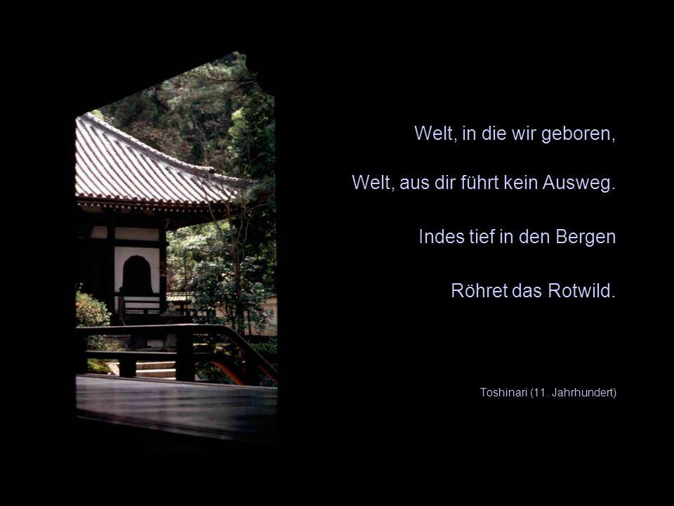 Welt, in die wir geboren, Welt, aus dir führt kein Ausweg. Indes tief in den Bergen Röhret das Rotwild. Toshinari (11. Jahrhundert) X