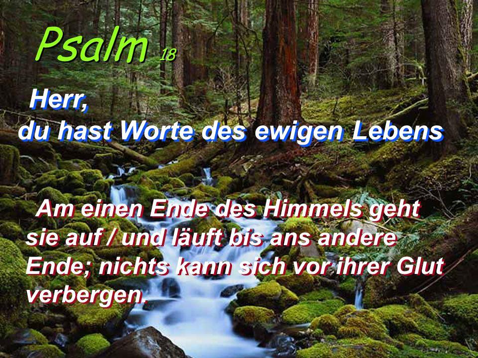 Psalm 18 Herr, du hast Worte des ewigen Lebens Herr, du hast Worte des ewigen Lebens Am einen Ende des Himmels geht sie auf / und läuft bis ans andere Ende; nichts kann sich vor ihrer Glut verbergen.
