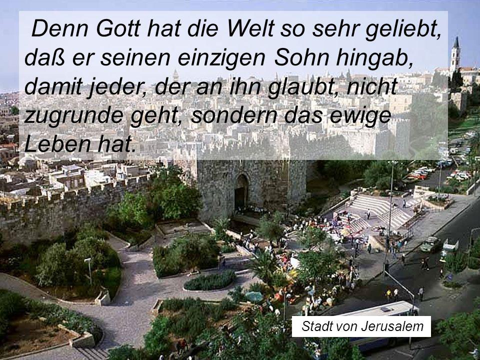 Stadt von Jerusalem Denn Gott hat die Welt so sehr geliebt, daß er seinen einzigen Sohn hingab, damit jeder, der an ihn glaubt, nicht zugrunde geht, sondern das ewige Leben hat.