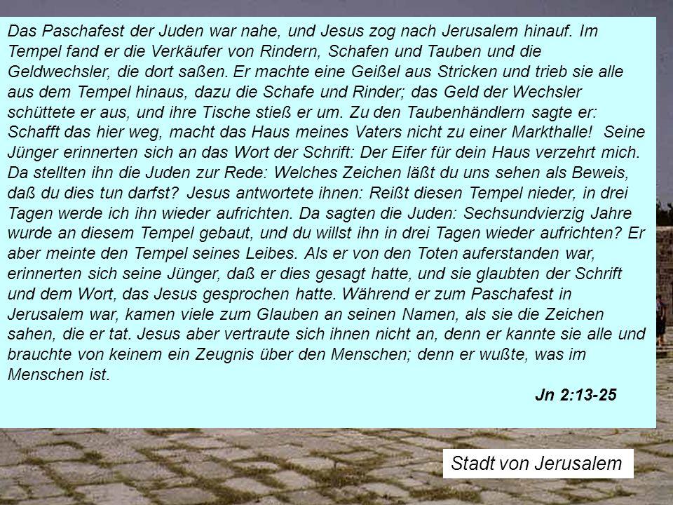 Stadt von Jerusalem Das Paschafest der Juden war nahe, und Jesus zog nach Jerusalem hinauf. Im Tempel fand er die Verkäufer von Rindern, Schafen und T