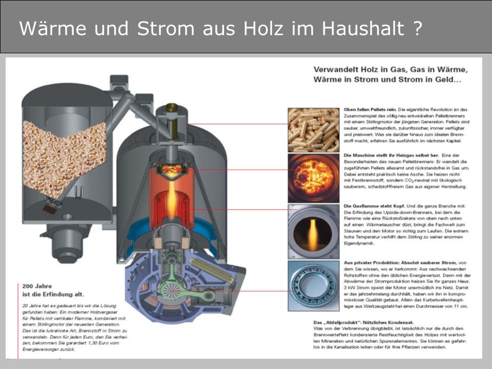 © B.Zimmer – Fachhochschule Salzburg GmbH Wärme und Strom aus Holz im Haushalt ?