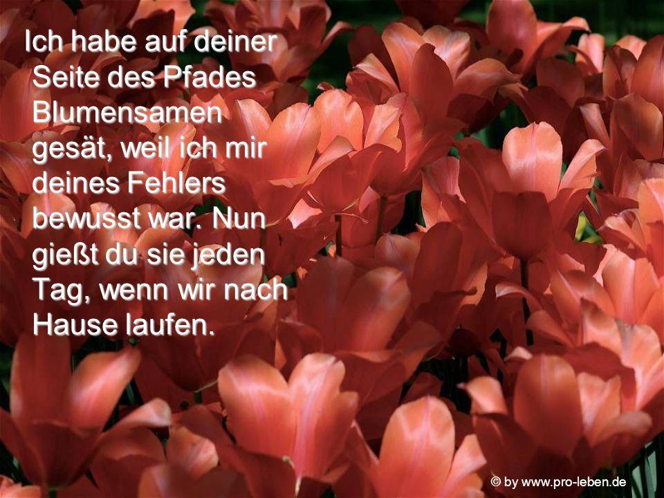 © by www.pro-leben.de Die alte Frau lächelte.
