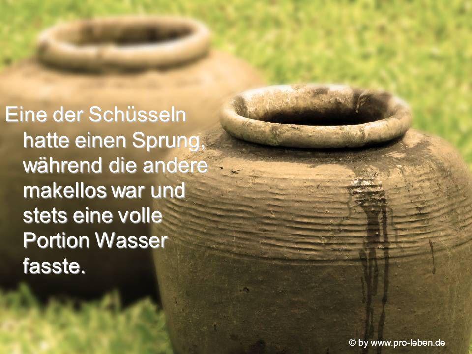 © by www.pro-leben.de Eine der Schüsseln hatte einen Sprung, während die andere makellos war und stets eine volle Portion Wasser fasste.