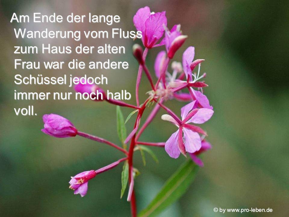 © by www.pro-leben.de Am Ende der lange Wanderung vom Fluss zum Haus der alten Frau war die andere Schüssel jedoch immer nur noch halb voll.