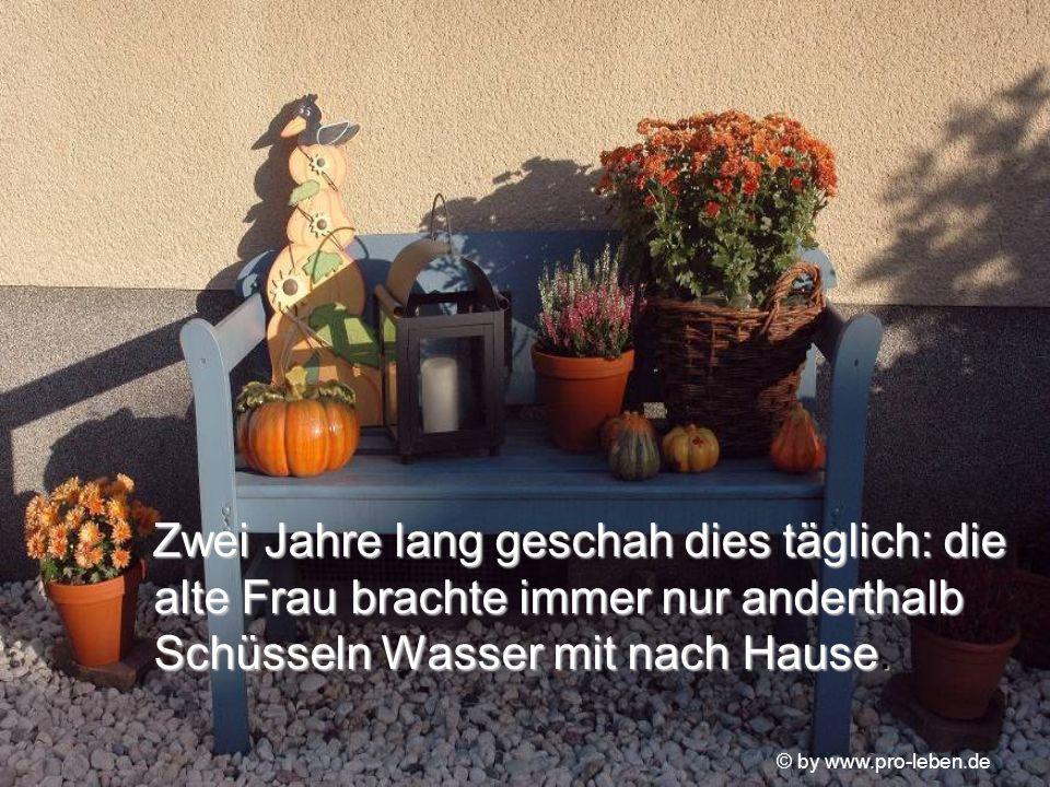 © by www.pro-leben.de Zwei Jahre lang geschah dies täglich: die alte Frau brachte immer nur anderthalb Schüsseln Wasser mit nach Hause.