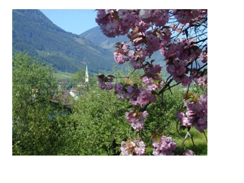 Altausseer See mit Blick auf den Dachstein