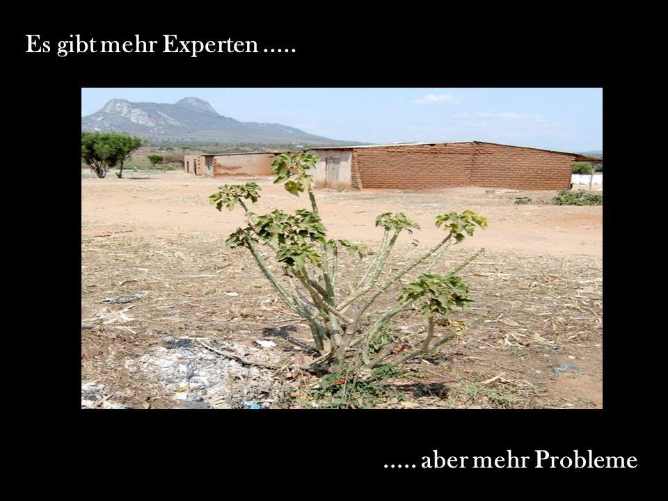 Es gibt mehr Experten.......... aber mehr Probleme