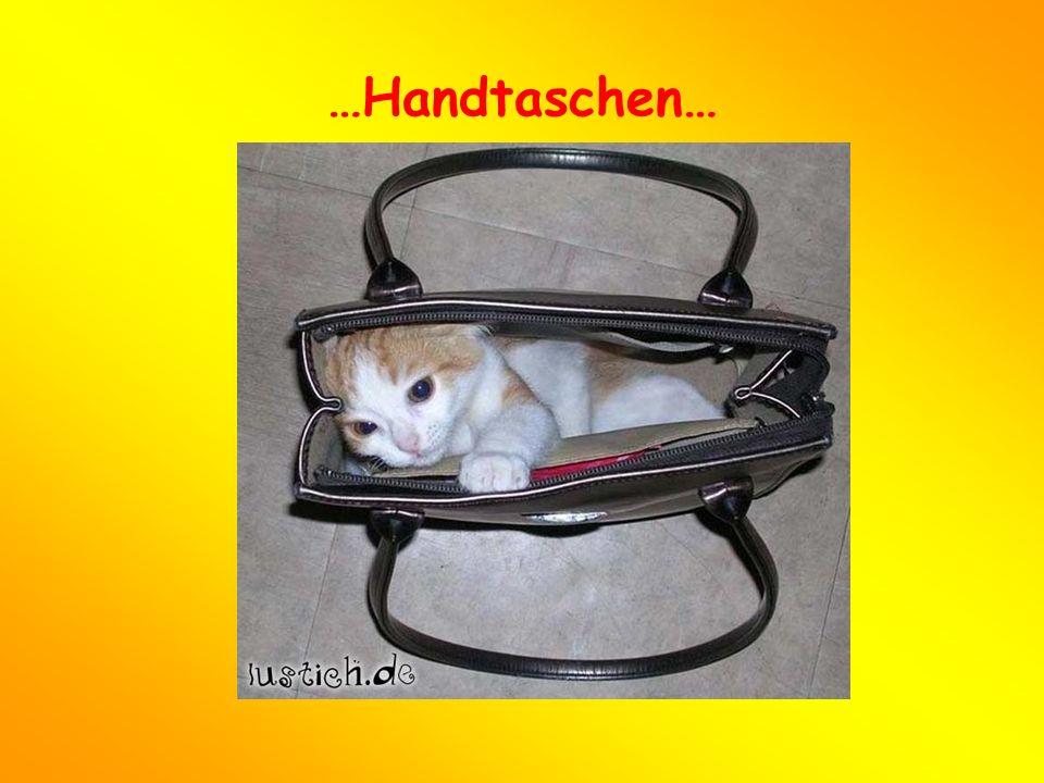 …Handtaschen…