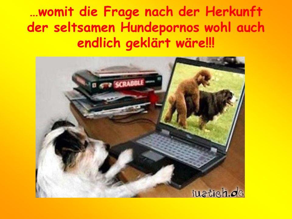 …womit die Frage nach der Herkunft der seltsamen Hundepornos wohl auch endlich geklärt wäre!!!