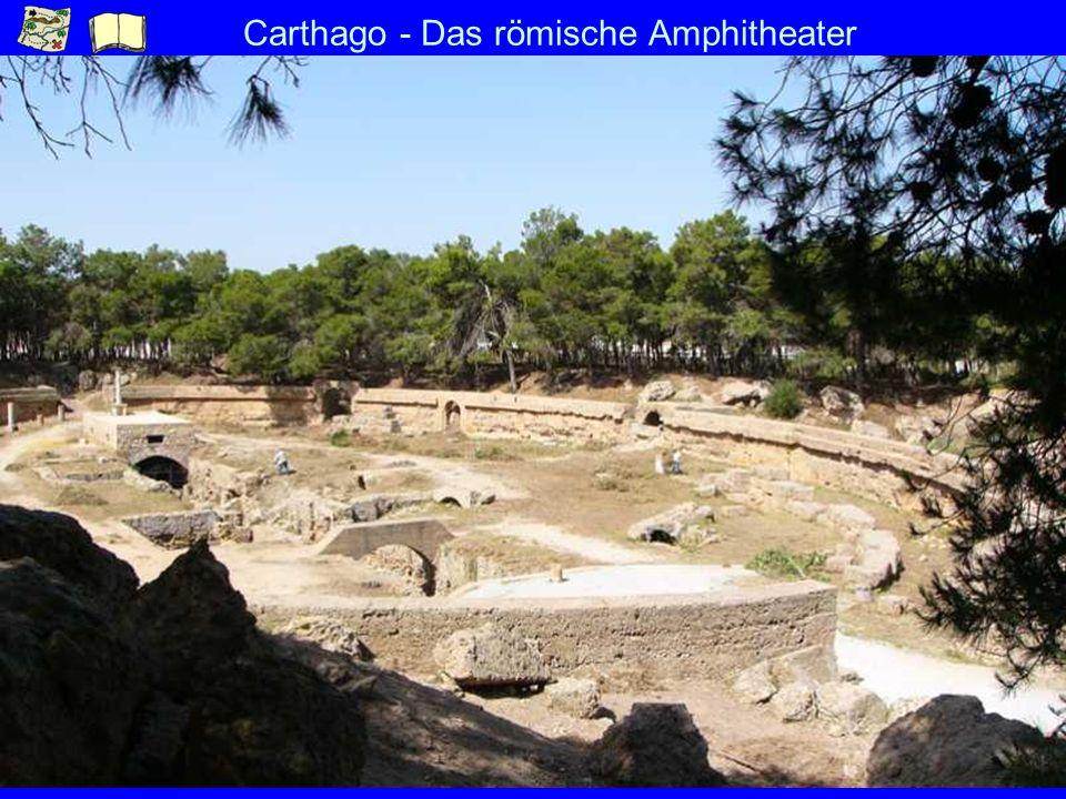 Carthago - Das römische Amphitheater
