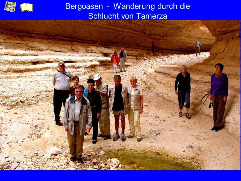 Bergoasen - Wanderung durch die Schlucht von Tamerza