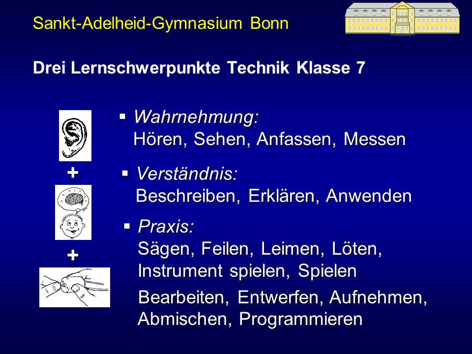 Sankt-Adelheid-Gymnasium Bonn Wahrnehmung: Hören, Sehen, Anfassen, Messen Wahrnehmung: Hören, Sehen, Anfassen, Messen Verständnis: Beschreiben, Erklär