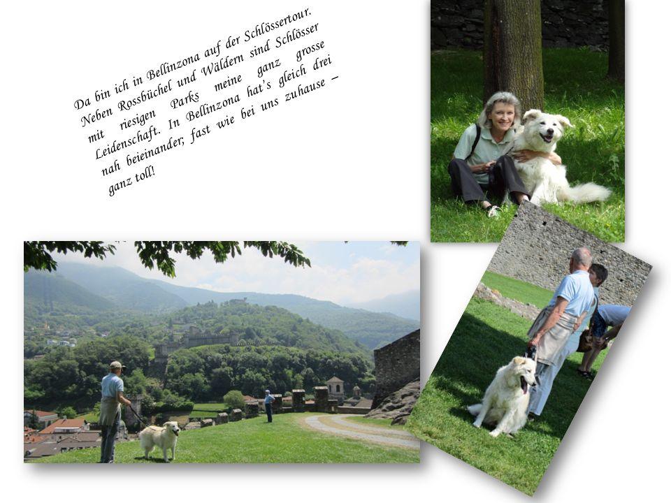 Da bin ich in den Ferien im Tessin bei ganz lieben Freunden. Ich bewache deren Haus und Garten. Gar nicht so einfach, weil der erstens sehr gross ist
