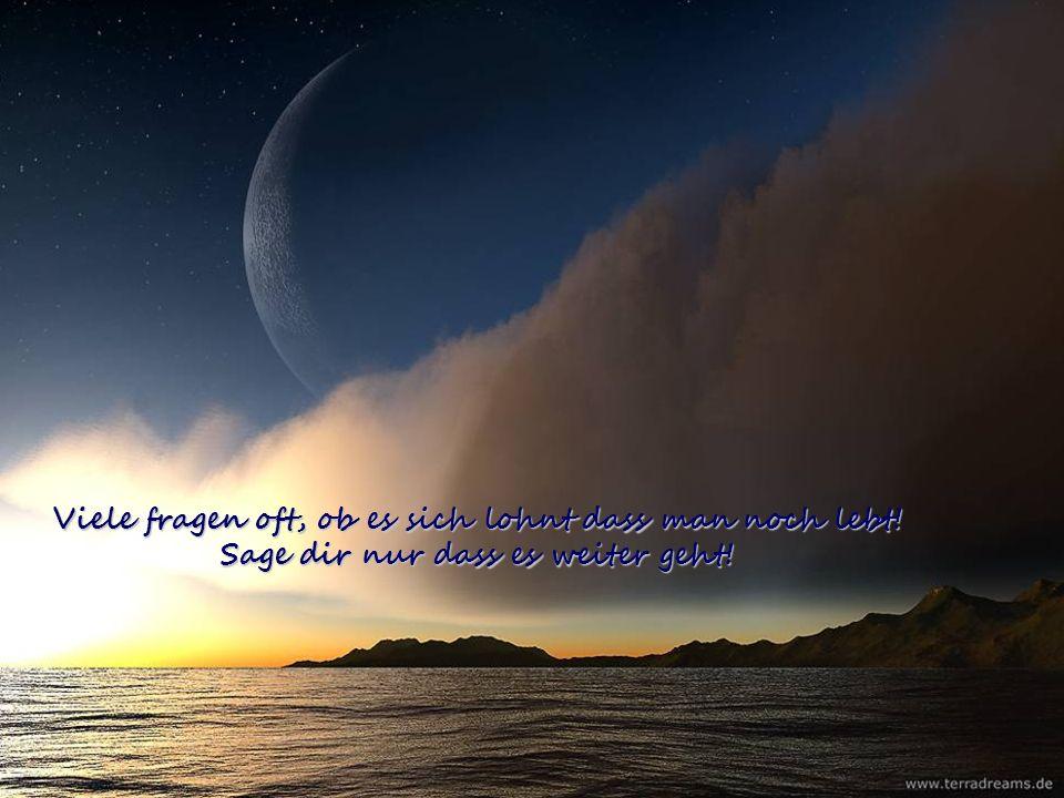 Viele stehen morgens auf und fanden keinen Schlaf. Weil das Schicksal und das Glück ihr Leben böse traf!