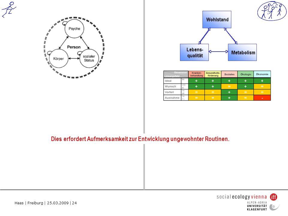 Haas | Freiburg | 25.03.2009 | 24 Dies erfordert Aufmerksamkeit zur Entwicklung ungewohnter Routinen.