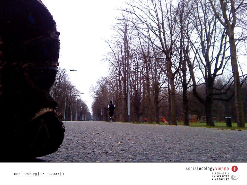 Haas   Freiburg   25.03.2009   24 Dies erfordert Aufmerksamkeit zur Entwicklung ungewohnter Routinen.