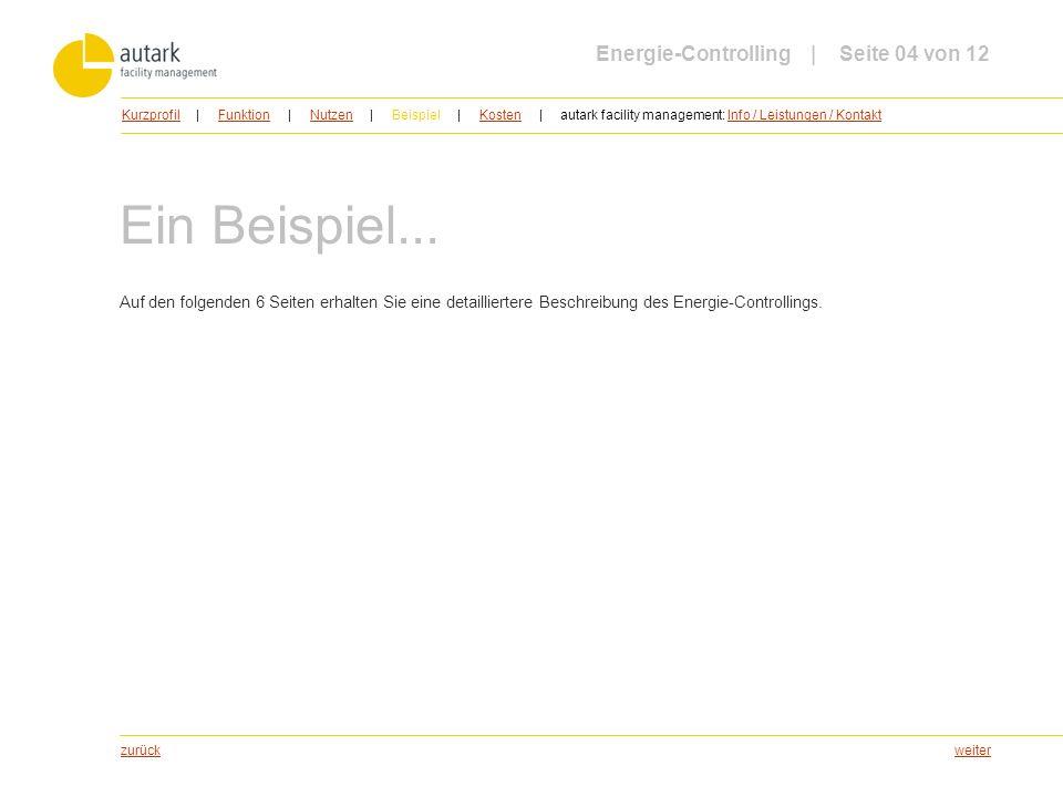 weiter Ein Beispiel... Auf den folgenden 6 Seiten erhalten Sie eine detailliertere Beschreibung des Energie-Controllings. zurück Energie-Controlling |