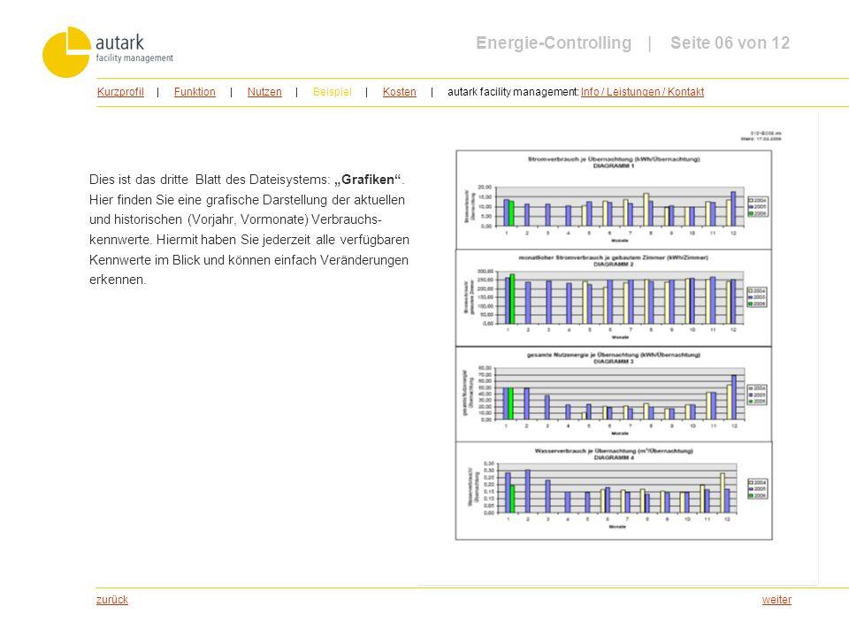 weiter Dies ist das dritte Blatt des Dateisystems: Grafiken. Hier finden Sie eine grafische Darstellung der aktuellen und historischen (Vorjahr, Vormo