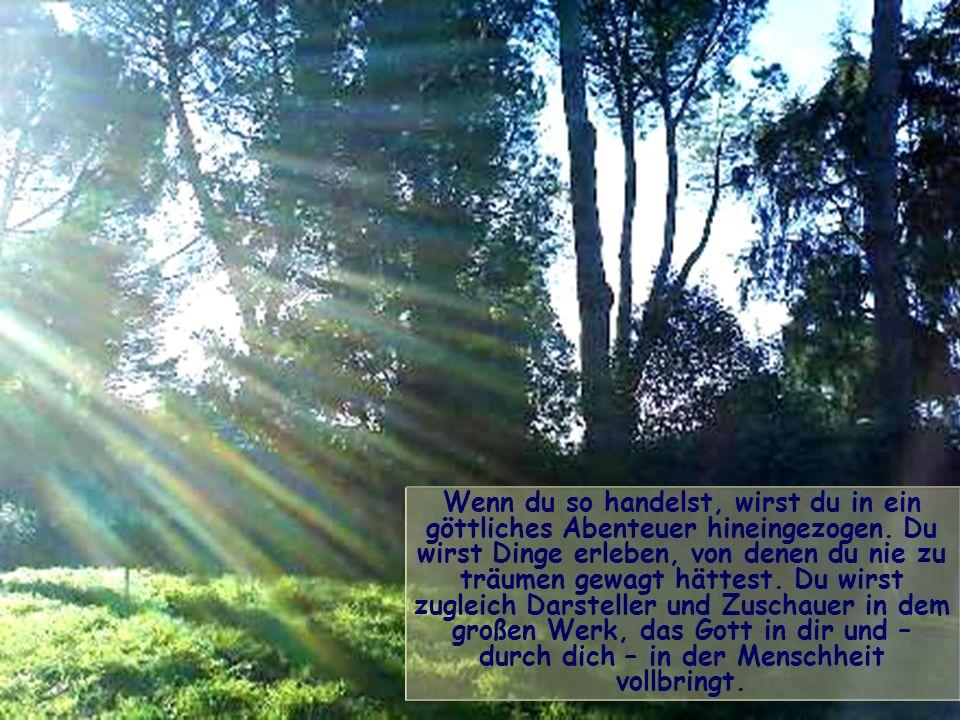 Der Christ und auch der Mensch guten Willens ist gerufen, auf die Sonne zuzugehen im Licht des eigenen Strahls, der sich von allen übrigen Strahlen un