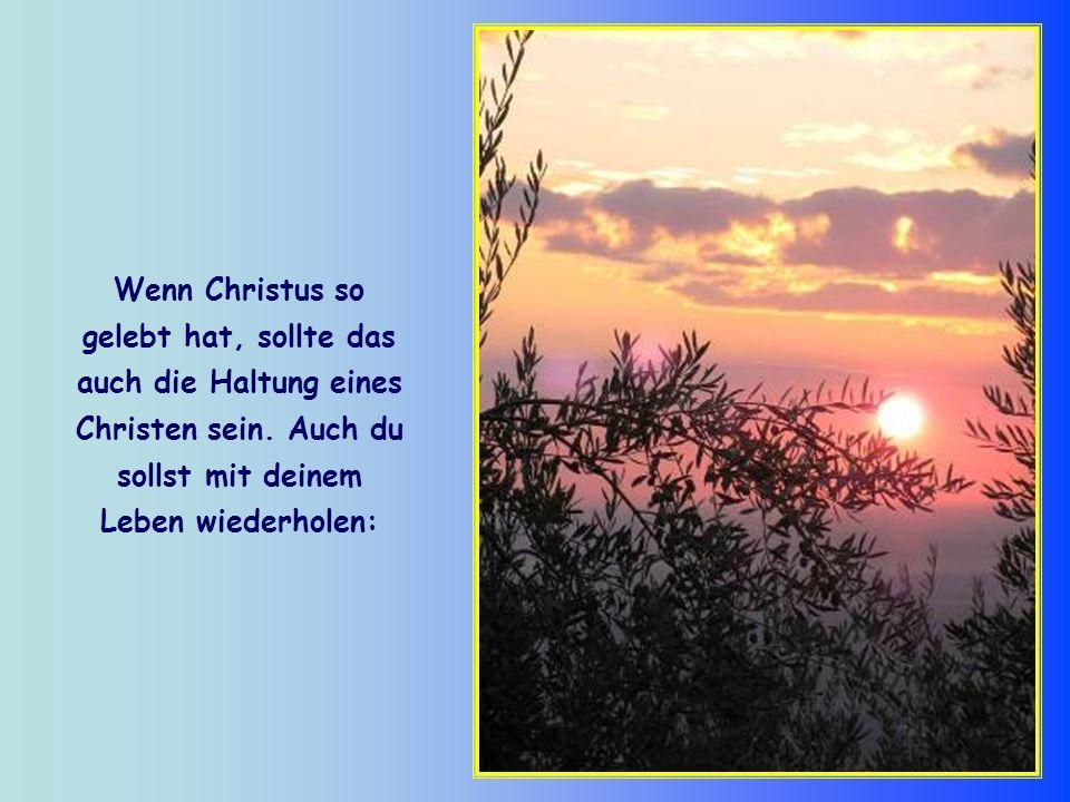 Christus hat jedoch nicht bis zu diesem Tag gewartet, um den eigenen Willen mit dem des Vaters in Einklang zu bringen. Er hat es sein ganzes Leben lan