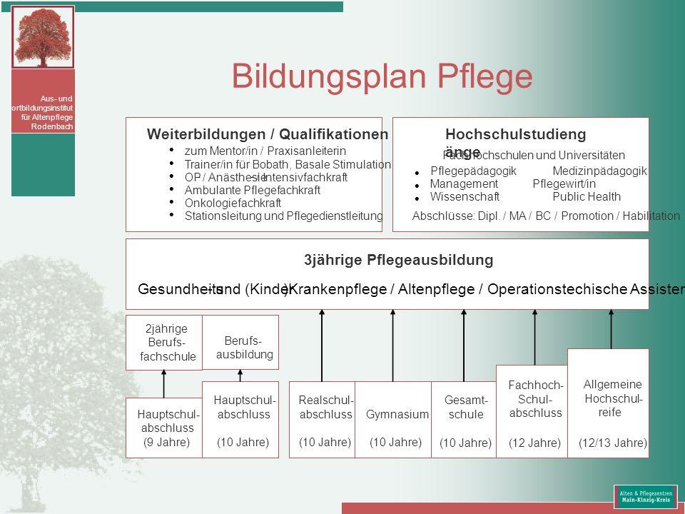 Aus- und Fortbildungsinstitut für Altenpflege Rodenbach Bildungsplan Pflege