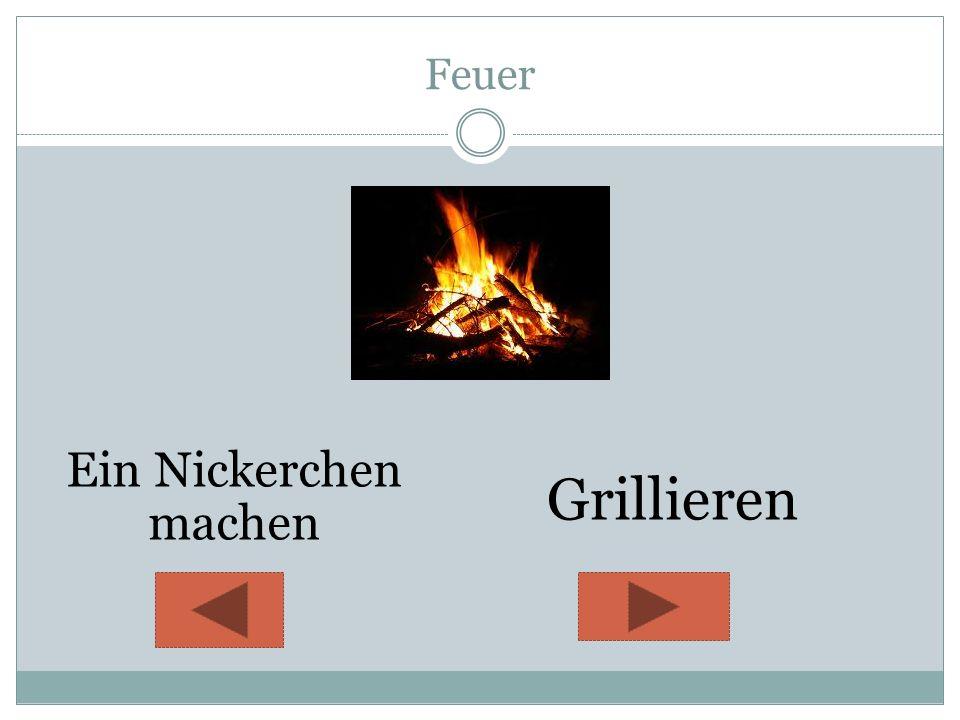 Feuer Ein Nickerchen machen Grillieren