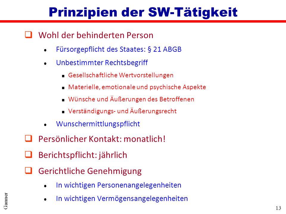 13 Ganner Prinzipien der SW-Tätigkeit qWohl der behinderten Person l Fürsorgepflicht des Staates: § 21 ABGB l Unbestimmter Rechtsbegriff Gesellschaftl