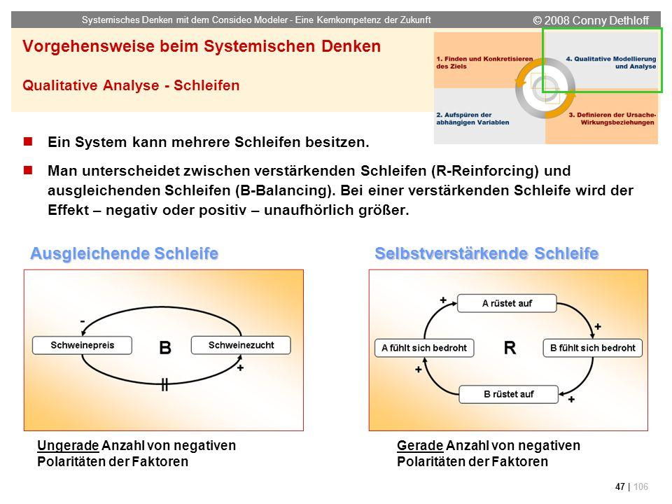 © 2008 Conny Dethloff Systemisches Denken mit dem Consideo Modeler - Eine Kernkompetenz der Zukunft 47 | 106 Vorgehensweise beim Systemischen Denken Q