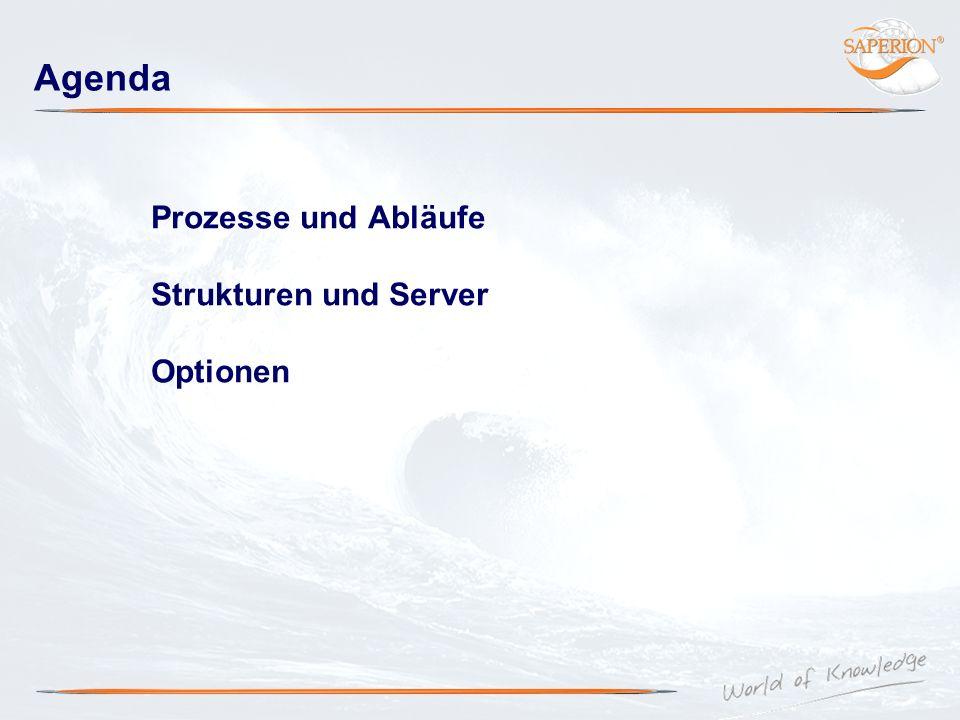 Agenda Prozesse und Abläufe Strukturen und Server Optionen