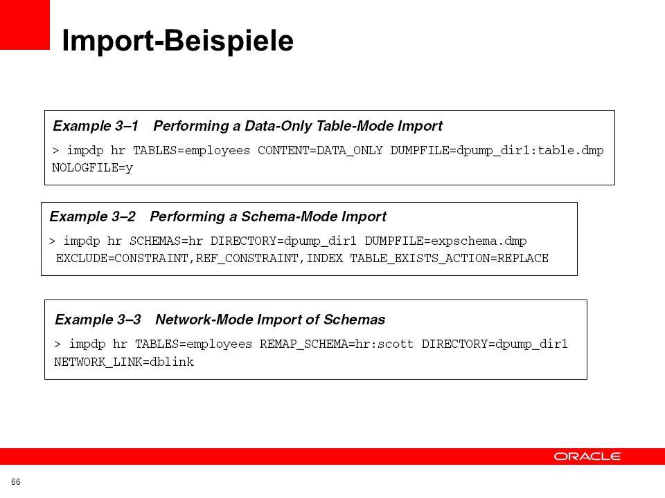 Export-Beispiele 65