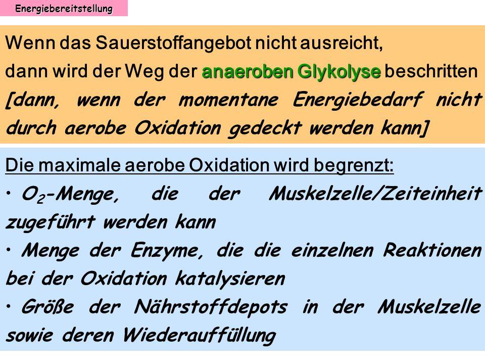 Energiebereitstellung Wenn das Sauerstoffangebot nicht ausreicht, anaeroben Glykolyse dann wird der Weg der anaeroben Glykolyse beschritten [dann, wen