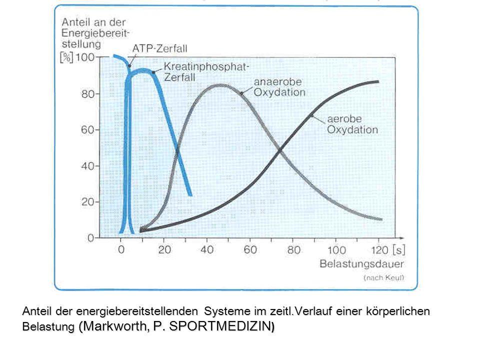 Anteil der energiebereitstellenden Systeme im zeitl.Verlauf einer körperlichen Belastung ( Markworth, P. SPORTMEDIZIN )