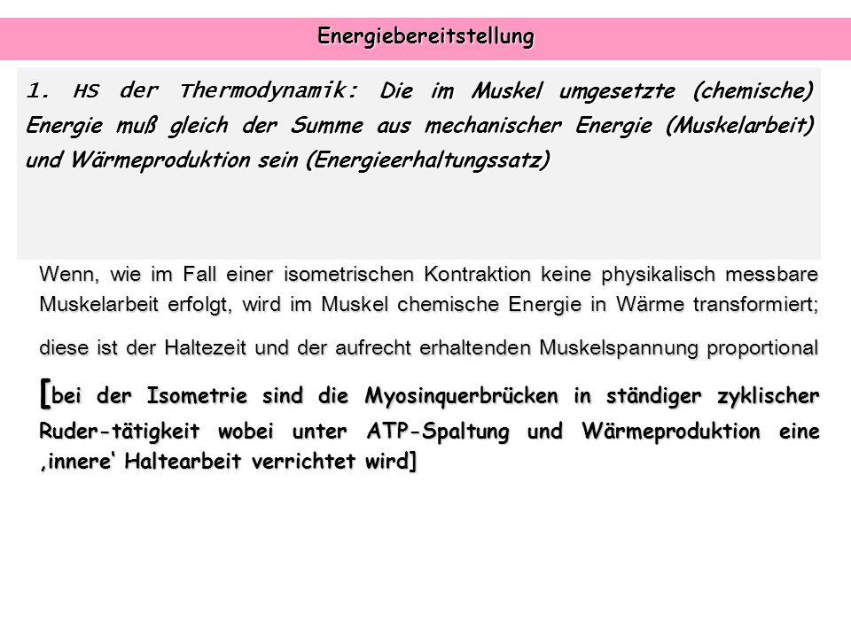 Energiebereitstellung 1. HS der Thermodynamik: Die im Muskel umgesetzte (chemische) Energie muß gleich der Summe aus mechanischer Energie (Muskelarbei