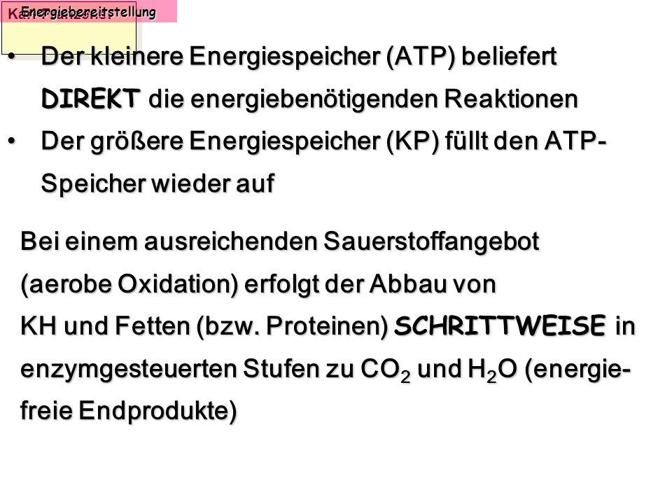 Karl-Franzens: Energiebereitstellung Bei einem ausreichenden Sauerstoffangebot (aerobe Oxidation) erfolgt der Abbau von KH und Fetten (bzw. Proteinen)