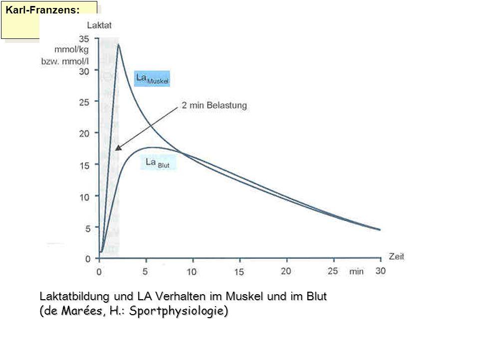 Karl-Franzens: Laktatbildung und LA Verhalten im Muskel und im Blut (de Marées, H.: Sportphysiologie)