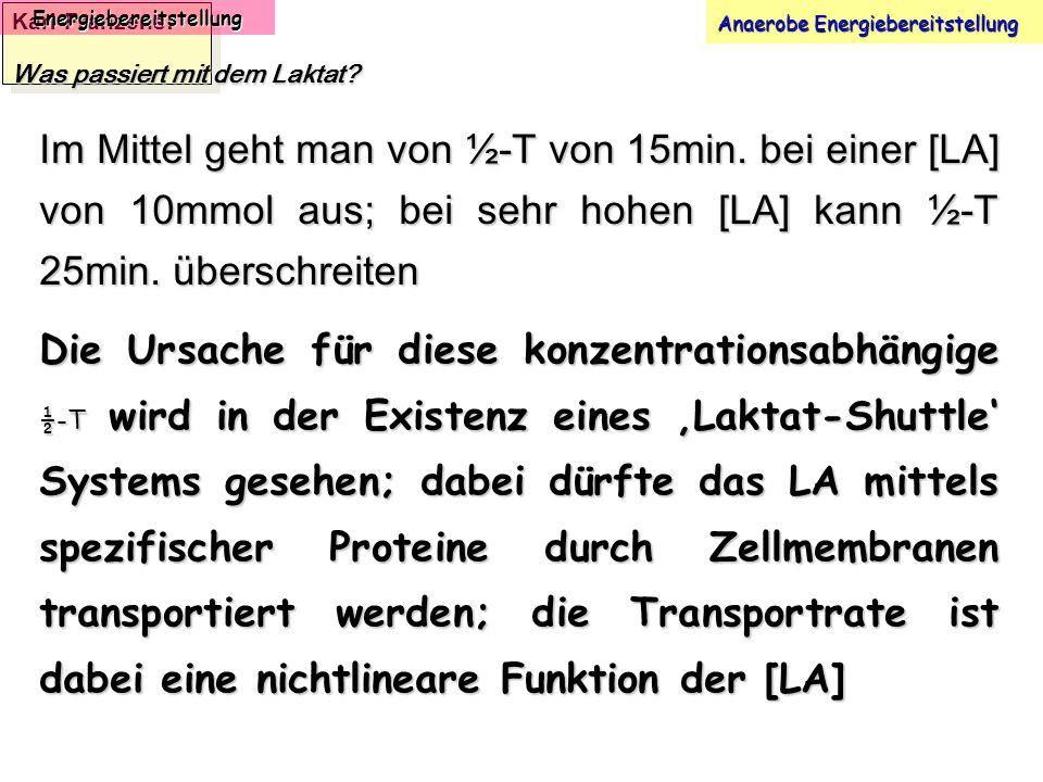 Karl-Franzens: Energiebereitstellung Anaerobe Energiebereitstellung Was passiert mit dem Laktat? Im Mittel geht man von ½-T von 15min. bei einer [LA]