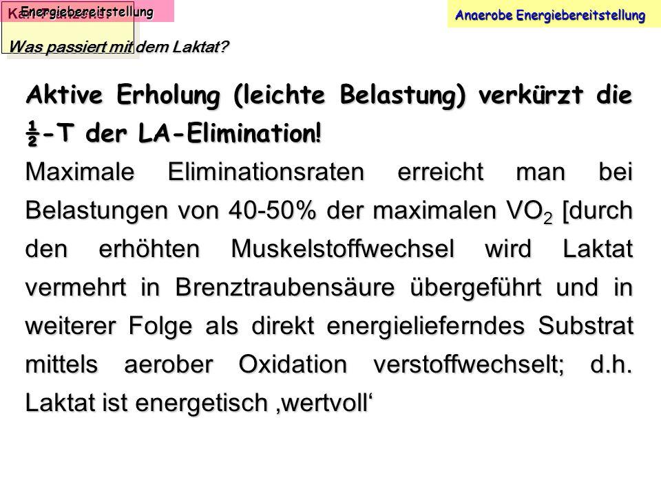 Karl-Franzens: Energiebereitstellung Anaerobe Energiebereitstellung Was passiert mit dem Laktat? Aktive Erholung (leichte Belastung) verkürzt die ½-T