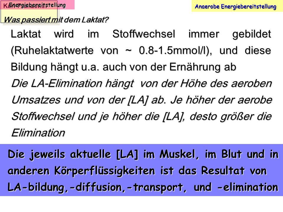 Karl-Franzens: Energiebereitstellung Anaerobe Energiebereitstellung Was passiert mit dem Laktat? Laktat wird im Stoffwechsel immer gebildet (Ruhelakta
