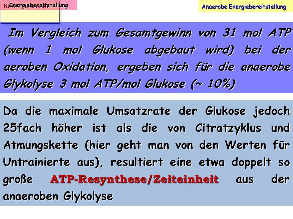 Karl-Franzens: Energiebereitstellung Anaerobe Energiebereitstellung Im Vergleich zum Gesamtgewinn von 31 mol ATP (wenn 1 mol Glukose abgebaut wird) be