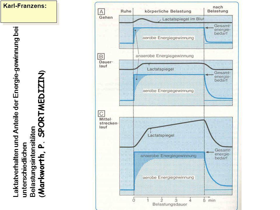 Karl-Franzens: Laktatverhalten und Anteile der Energie-gewinnung bei unterschiedlichen Belastungsintensitäten ( Markworth, P. SPORTMEDIZIN )