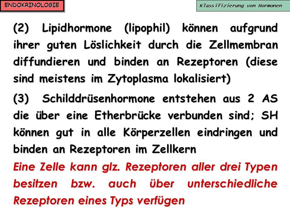 ENDOKRINOLOGIE Klassifizierung von Hormonen (2)Lipidhormone (lipophil) können aufgrund ihrer guten Löslichkeit durch die Zellmembran diffundieren und