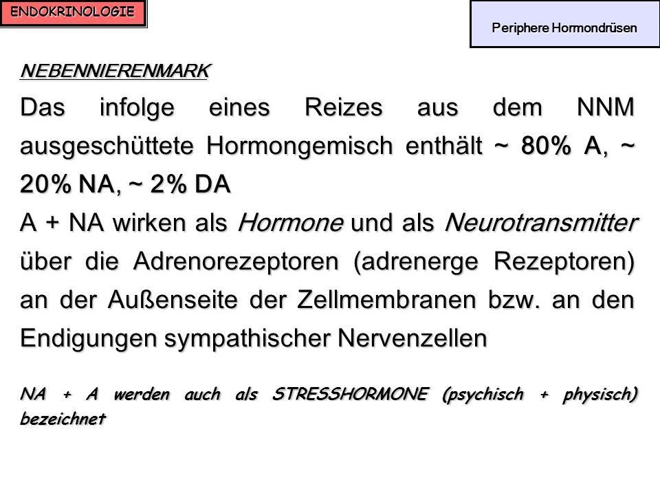 ENDOKRINOLOGIE Periphere Hormondrüsen Periphere Hormondrüsen NEBENNIERENMARK Das infolge eines Reizes aus dem NNM ausgeschüttete Hormongemisch enthält