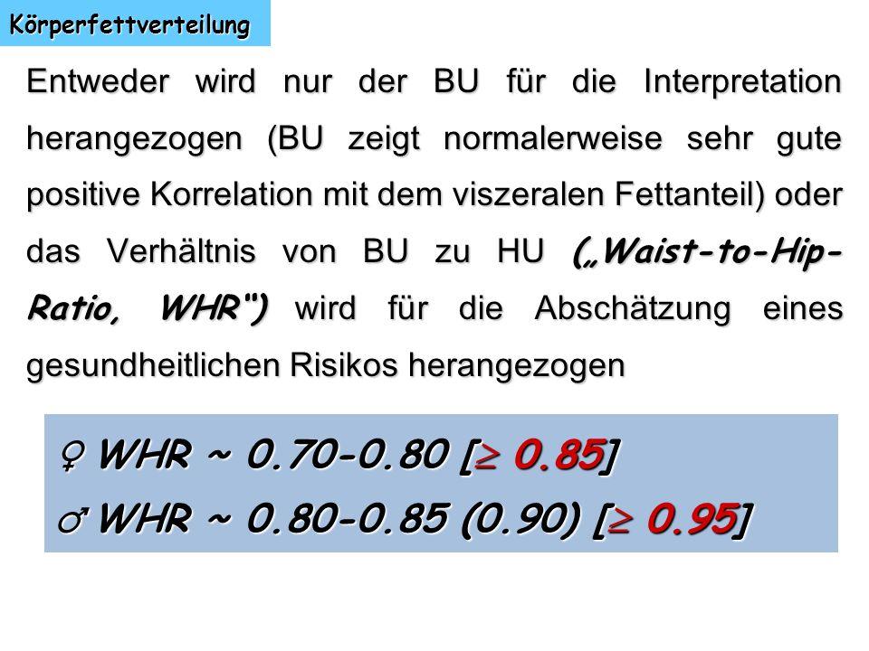 Körperfettverteilung Entweder wird nur der BU für die Interpretation herangezogen (BU zeigt normalerweise sehr gute positive Korrelation mit dem visze