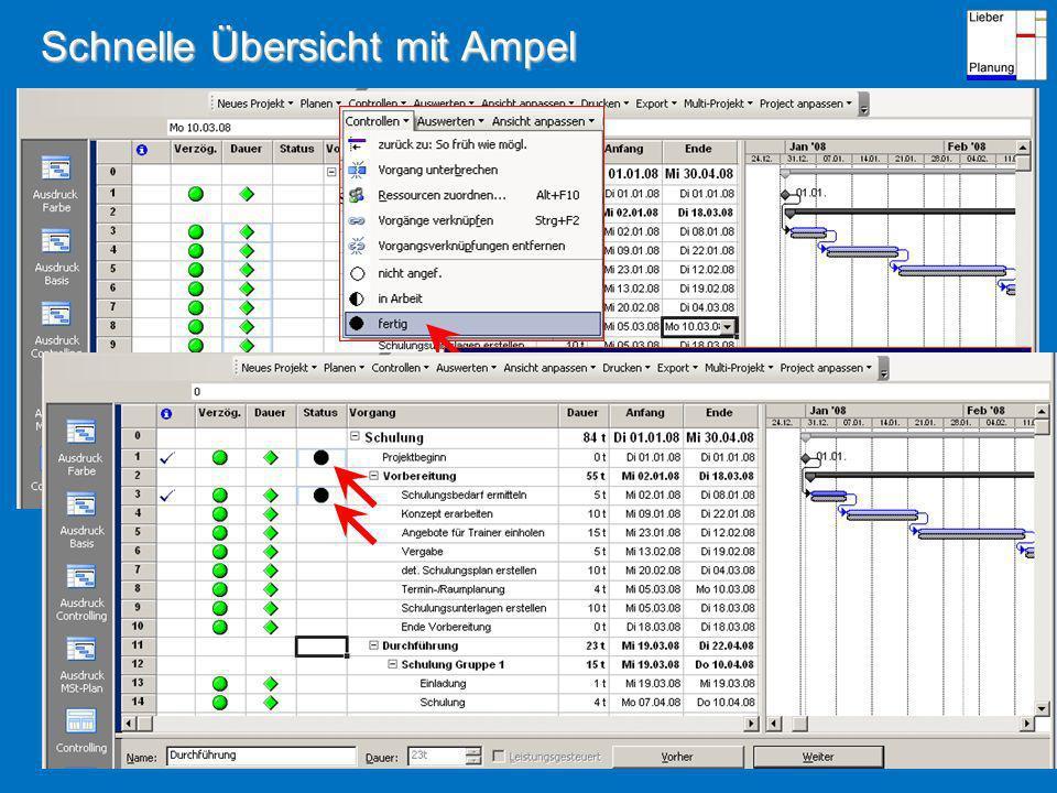 Schnelle Übersicht mit Ampel Vorgangsstatus nach Methode 0 / 50 / 100