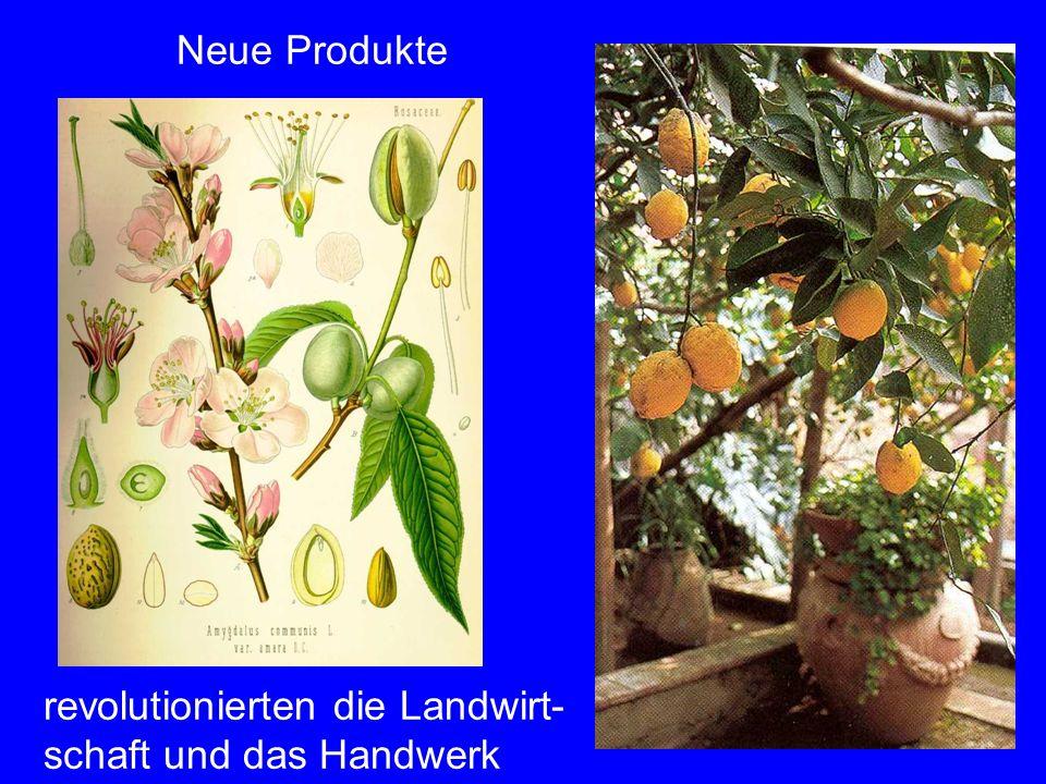 Neue Produkte revolutionierten die Landwirt- schaft und das Handwerk