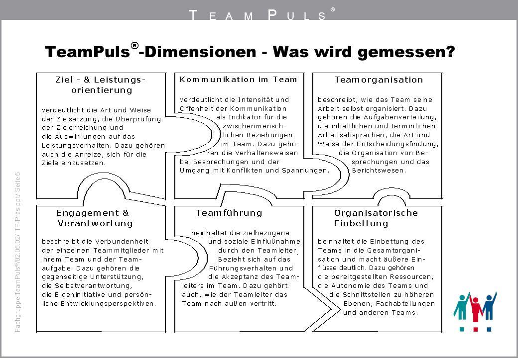 T EAM P ULS ® Fachgruppe TeamPuls / 02.05.02/ TP-Präs.ppt/ Seite 5 TeamPuls ® -Dimensionen - Was wird gemessen?