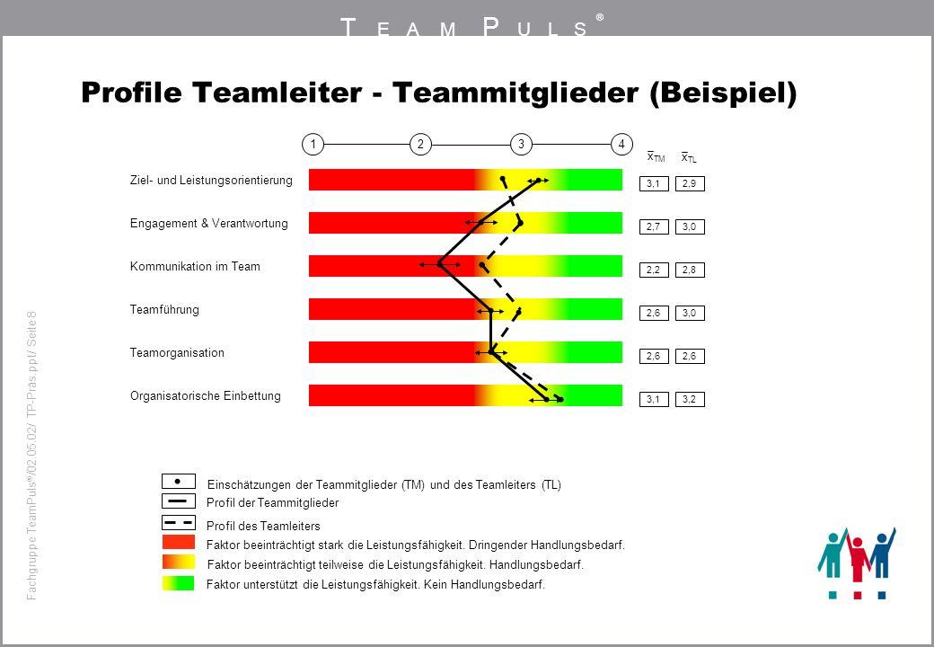 T EAM P ULS ® Fachgruppe TeamPuls / 02.05.02/ TP-Präs.ppt/ Seite 8 Profile Teamleiter - Teammitglieder (Beispiel) 3,12,9 4321 Ziel- und Leistungsorientierung 2,73,0 Engagement & Verantwortung 2,22,8 Kommunikation im Team 2,63,0 Teamführung 2,6 Teamorganisation 3,13,2 Organisatorische Einbettung Profil der Teammitglieder Faktor beeinträchtigt stark die Leistungsfähigkeit.