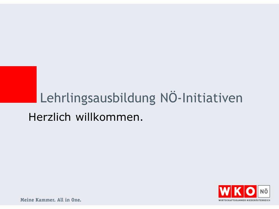 Lehrlingsausbildung NÖ-Initiativen Herzlich willkommen.
