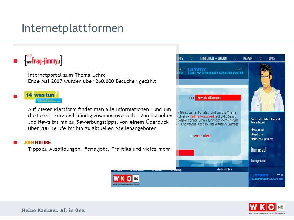 Internetplattformen Internetportal zum Thema Lehre Ende Mai 2007 wurden über 260.000 Besucher gezählt Auf dieser Plattform findet man alle Information