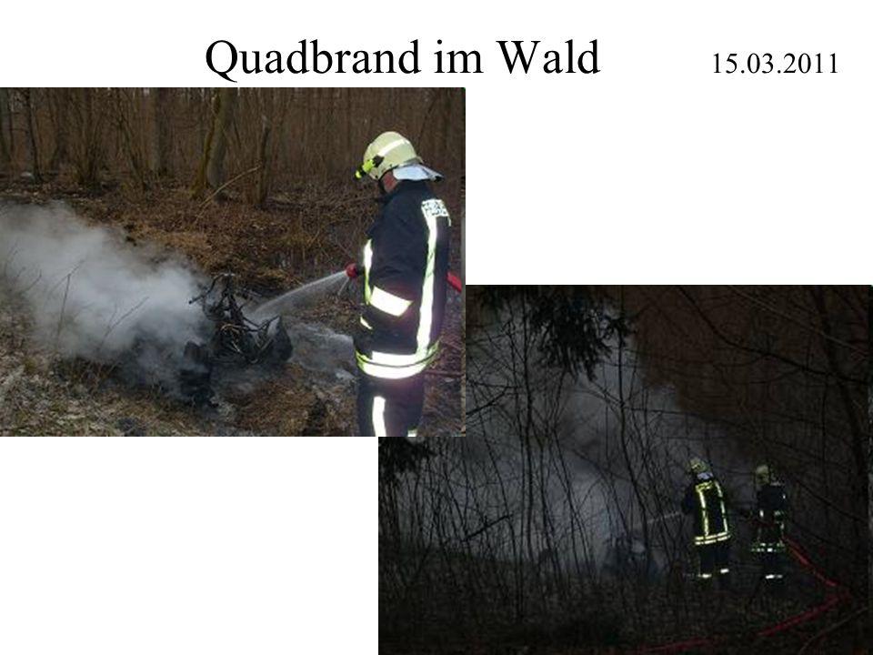 Quadbrand im Wald 15.03.2011